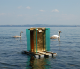 """""""Mediterranean Sonata"""" una nuova mostra a Trieste"""